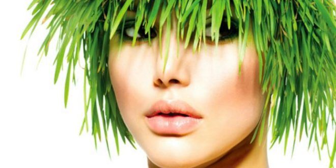 Vegetable Hair Dye, Safe Best Brands for Eyebrows, Pregnancy, Grey Coverage and Cancer Patients