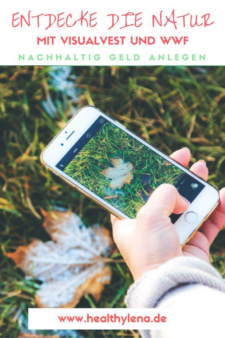 Dir liegen Nachhaltigkeit und Umweltschutz am Herzen? Heute verrate ich dir nicht nur, wie du mithilfe von VisualVest und WWF Kindern eine riesige Freude machen kannst und aktiv deine Herzensprojekte unterstützt, sondern auch, warum auch du mehr Zeit in der Natur verbringen solltest. Und du kannst im Rahmen der Baumentdecker-Set-Aktion sogar etwas gewinnen!