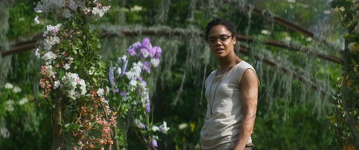 'Annihilation' Warps Real-Life Hox Genes Into Sci-Fi Horror