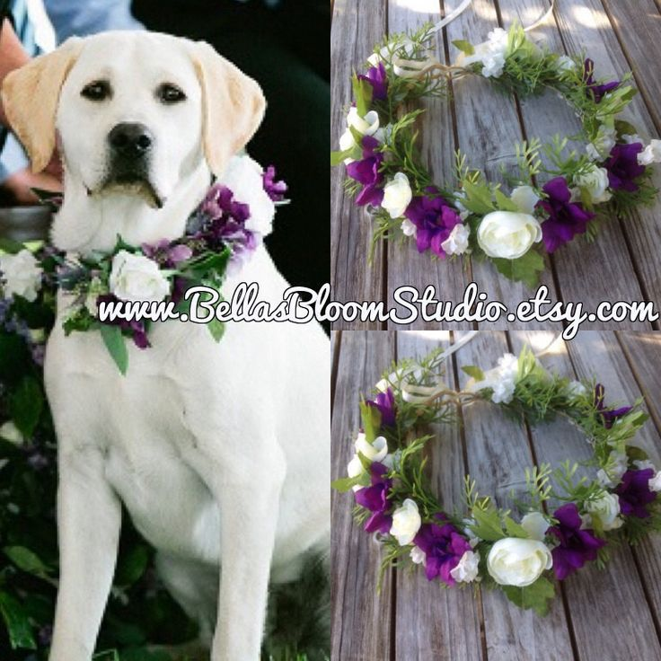 Dog Of Honor Wedding Collar Pet Attire Flower Crown Wreath Purple Etsy By