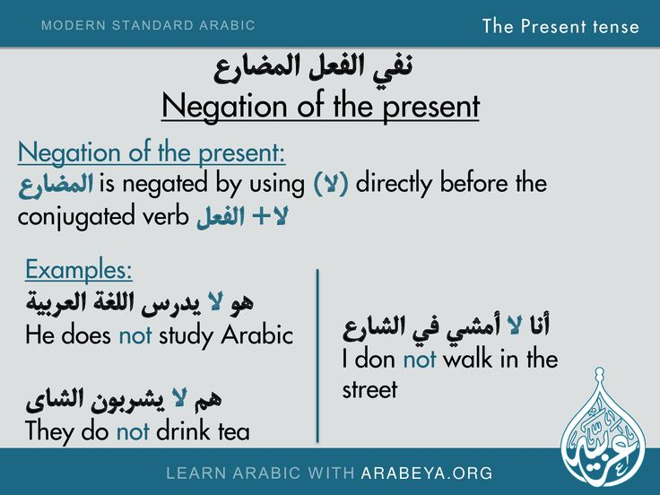 Negation & Examples of the present tense