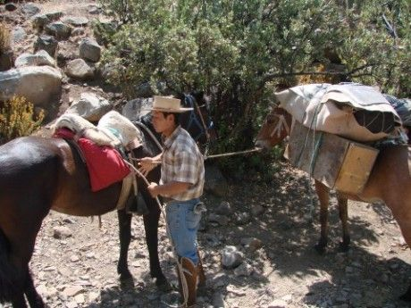 Victor, expert horseback arriero guide at Horse Riding Chile