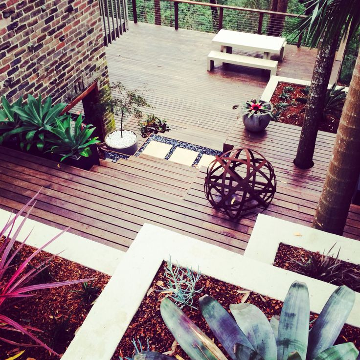 Terraced merbau decking with bromeliads, agaves and cordylines