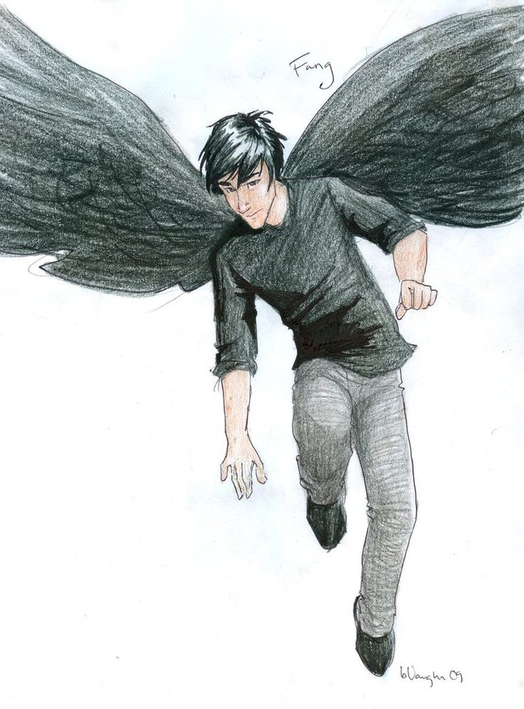 Fang by *burdge-bug on deviantART<--Hey guys I have a Maximum Ride board and anyone is welcome it doesn't matter if you read the book or just the manga just comment and I will add you to the board keep calm and fly on