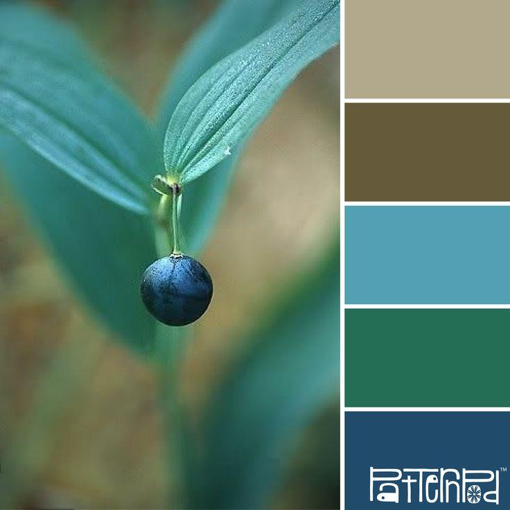 Flourish #patternpod #patternpodcolor #color