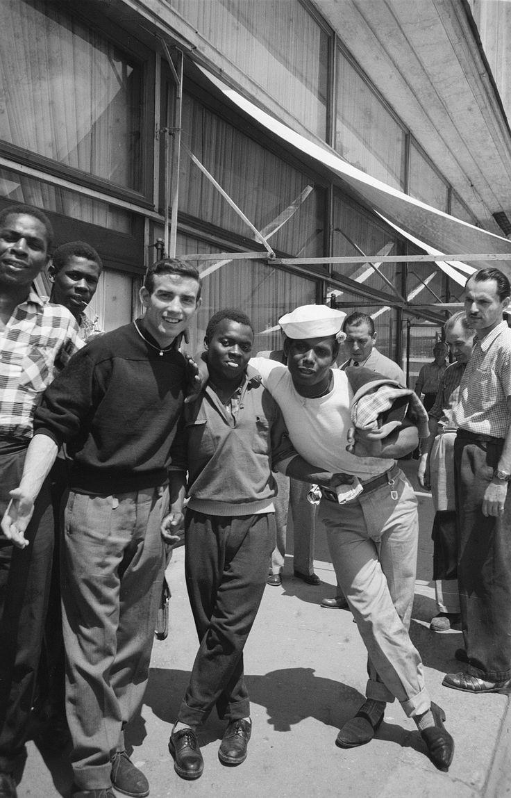 1956 diversitate