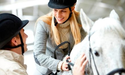 Centre Equestre du Scheidstein à Illkirch Graffenstaden : Cours d'équitation, adulte ou enfant: #ILLKIRCHGRAFFENSTADEN En promotion à…