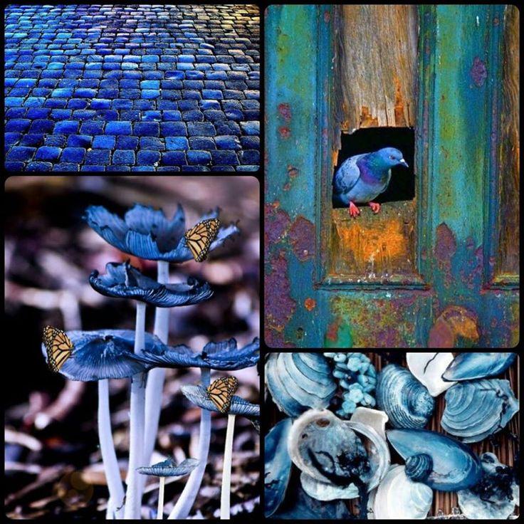 albastru in #albastru :) #inspiratie