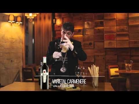 """Recenzie produs – """"VARIETAL CARMENERE"""". Urmăreşte filmuleţul prezentat de Somelier Sergiu Nedelea şi descoperă aroma acestor întamplări într-unul dintre cele mai faimoase vinuri din America Latină: Misiones De Rengo."""