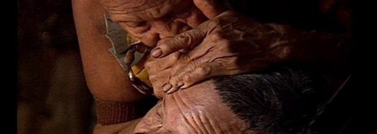 """""""A maior espécie e em maior risco de extinção da Floresta Amazônica não é a onça-pintada ou a harpia,"""" diz o etnobotânico Mark Plotkin: """"são as tribos isoladas e não contatadas."""" Em uma palestra vigorosa e equilibrada, ele nos leva ao mundo das tribos indígenas da floresta e às incríveis plantas medicinais que os xamãs usam para a cura."""