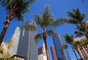 The 22 Essential LA Apps - Best Smartphone Apps For LA
