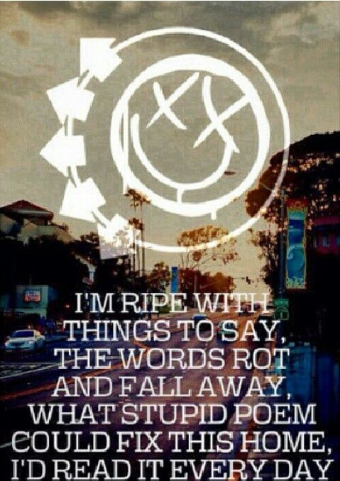 Blink 182 stay together for the kids