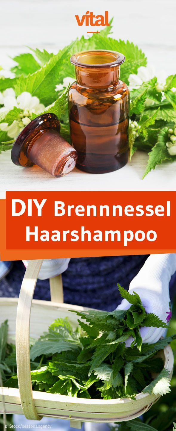 die besten 25 shampoo selber machen ideen auf pinterest selber machen shampoo diy kosmetik. Black Bedroom Furniture Sets. Home Design Ideas