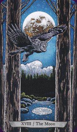 Animal-Totem-Tarot-:The Animal Totem Tarot features animals from around the world in their natural  sometimes not so natural) habitats. Created by Eugene Smith, Leeza Robertson Tarot Deck - - Llewellyn 2016