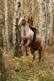 Хорошенькая молодая девушка на скачущий конь — стоковое изображение #59075815