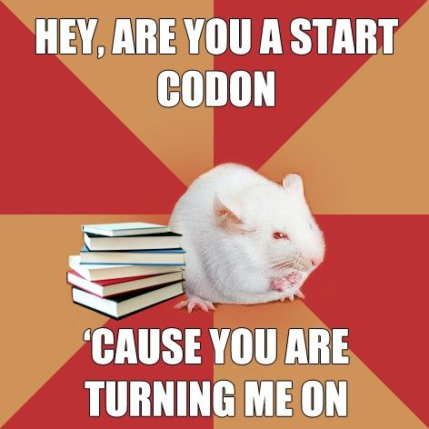 biology pick-up lines!  this is actually pretty hillarious! haha imagine blurting that out to somone!