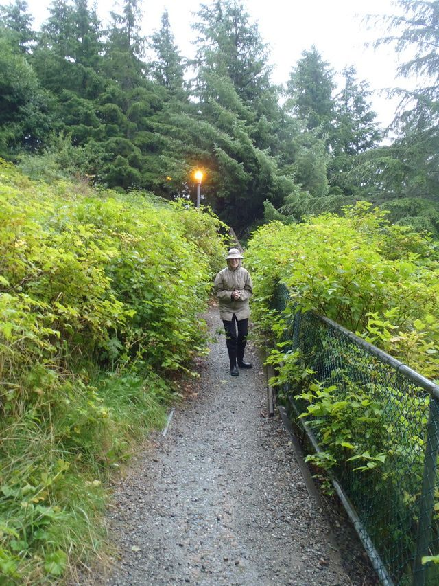 6 Things to Do in Ketchikan, Alaska: Enjoy Outdoor Activities - Hiking, Fishing, Kayaking, or Zip-Lining