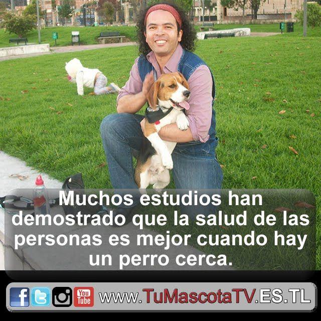 #migato #perrosygatos #miperro @iverflores7
