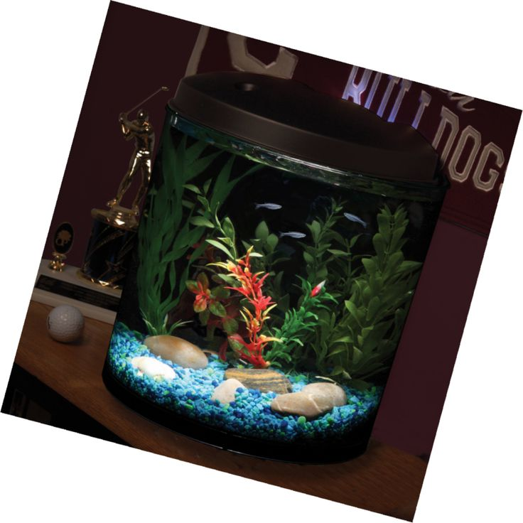 180 Gallons Aquarium