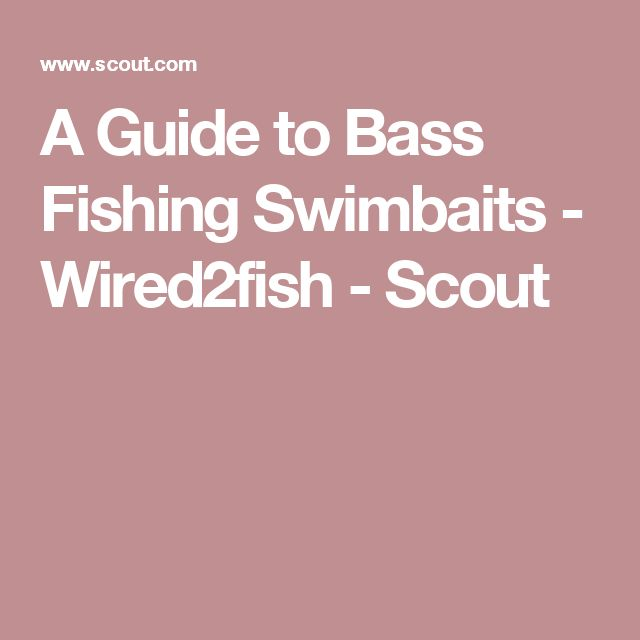 A Guide to Bass Fishing Swimbaits - Wired2fish - Scout