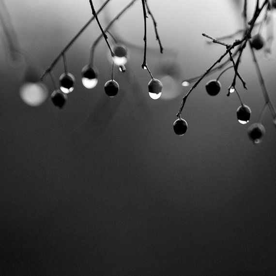 Rainy Day -- Black and White Photograph by keith dotson