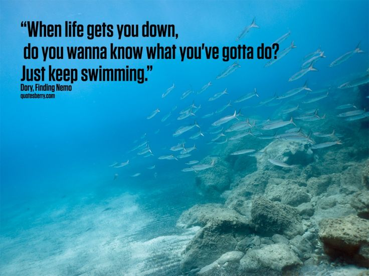the best swimmer quotes | Keep On Swimming Quote Sayings Swimming Quotes Quotesgram Daily ...