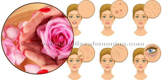 Cómo preparar   agua de rosas y sus beneficios para la piel