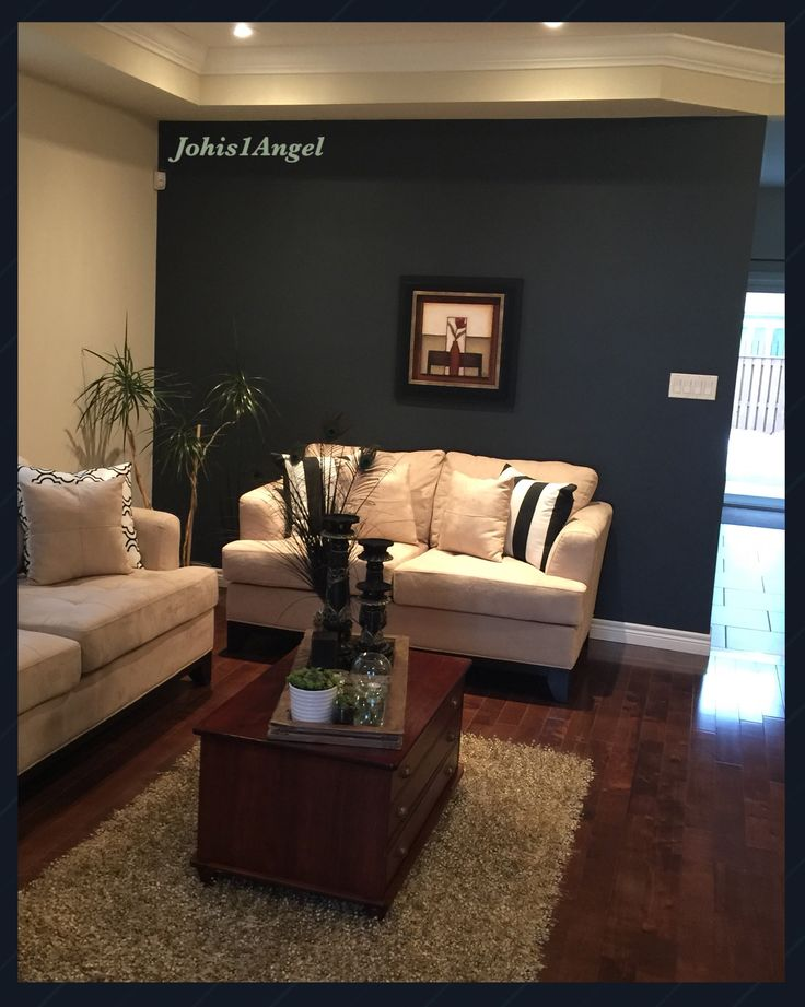 Living Room accent wall. I am used Benjamin Moore paint in Gravel Gray (2127-30). It has a blue under tone. I am in love with this color.