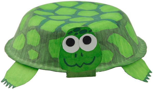 paper bowl turtle craft