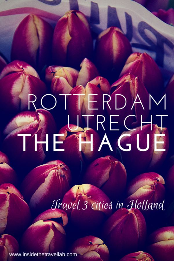 Travel three cities in Holland - Utrecht, Rotterdam and The Hague from @insidetravellab