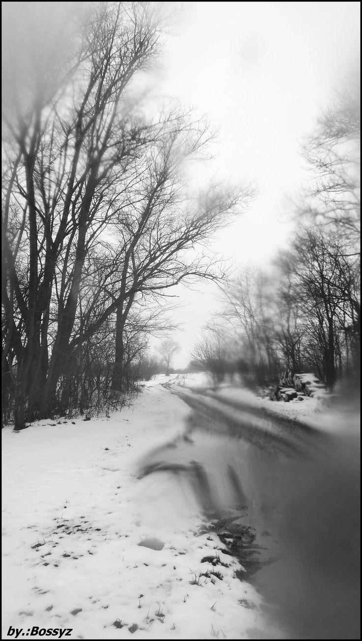 Winter Hungarian Lébény