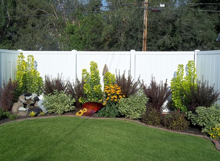 The 25 best landscaping along fence ideas on pinterest for Cheap bushes for landscaping
