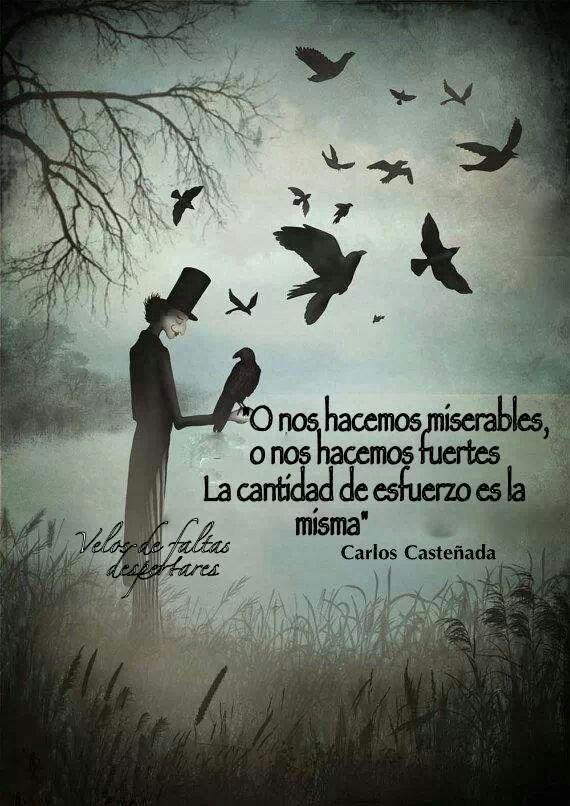 ... O nos hacemos miserables o nos hacemos fuertes, la cantidad de esfuerzo es la misma. Carlos Casteñeda.