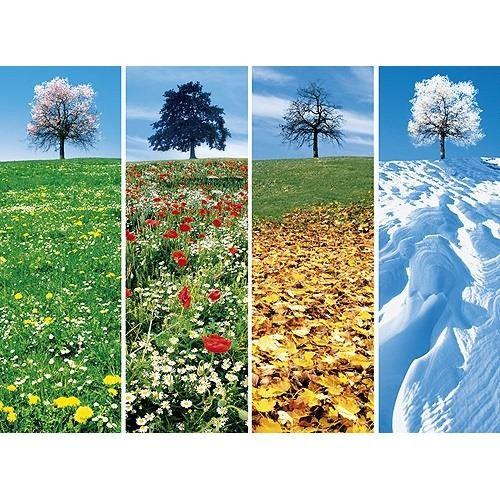.Neljä vuodenaikaa.