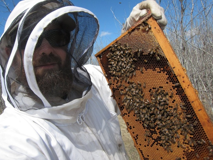 Me and the bees.  Paul's Farm SK