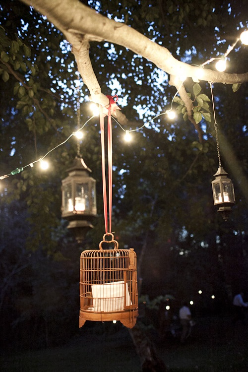 String Lights On Tree Branches : 15 best images about treehouse inspiration on Pinterest Trees, Kid and Cool tree houses