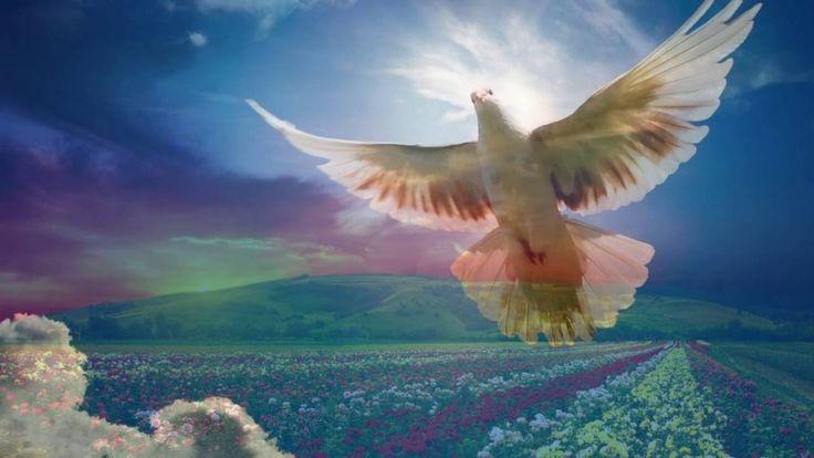 Пророк Мухаммад صلى الله عليه وسلم Как покинул бренный мир