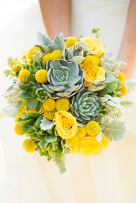 Bright yellow flowers and charming succulents.