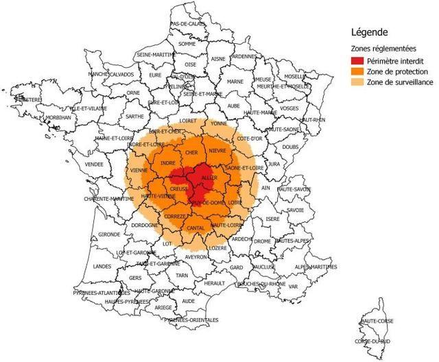 Fièvre catarrhale : la zone de surveillance s'étend - La découverte en Auvergne de nouveaux cas de cette maladie virale qui frappe les ruminants a des conséquences pour 158communes du Loir-et-Cher.
