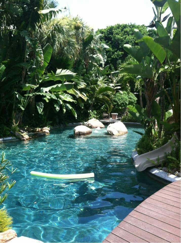 Beautiful jungle pool