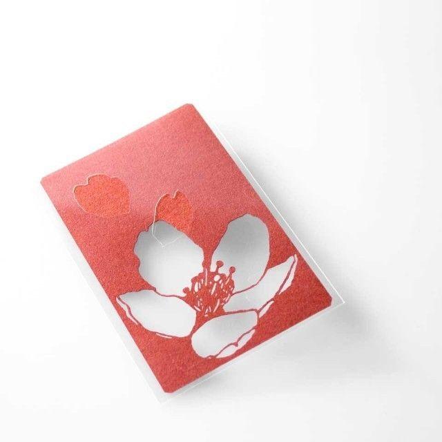 切り絵 カード しおり 名刺 桜 赤の色渋紙 1枚
