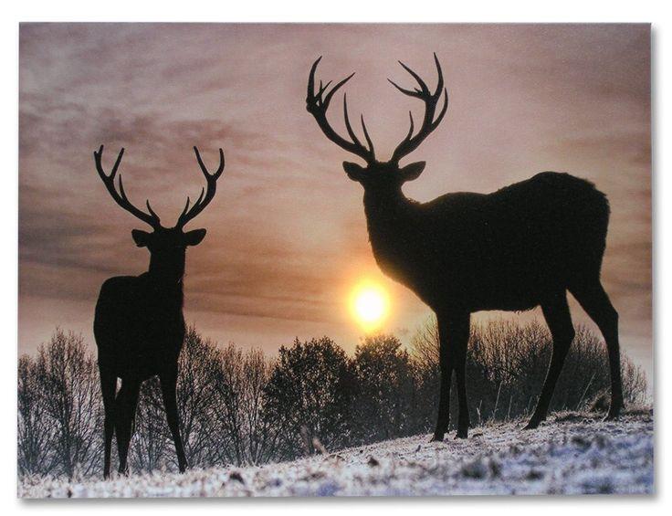 Deer Winter Scene - Light Up Deer Picture - LED Wrapped Canvas Print Shows 2 Deer with Large Antler Racks - Wildlife Wall Decoration - Deer Home Decor - 16x12 Inch