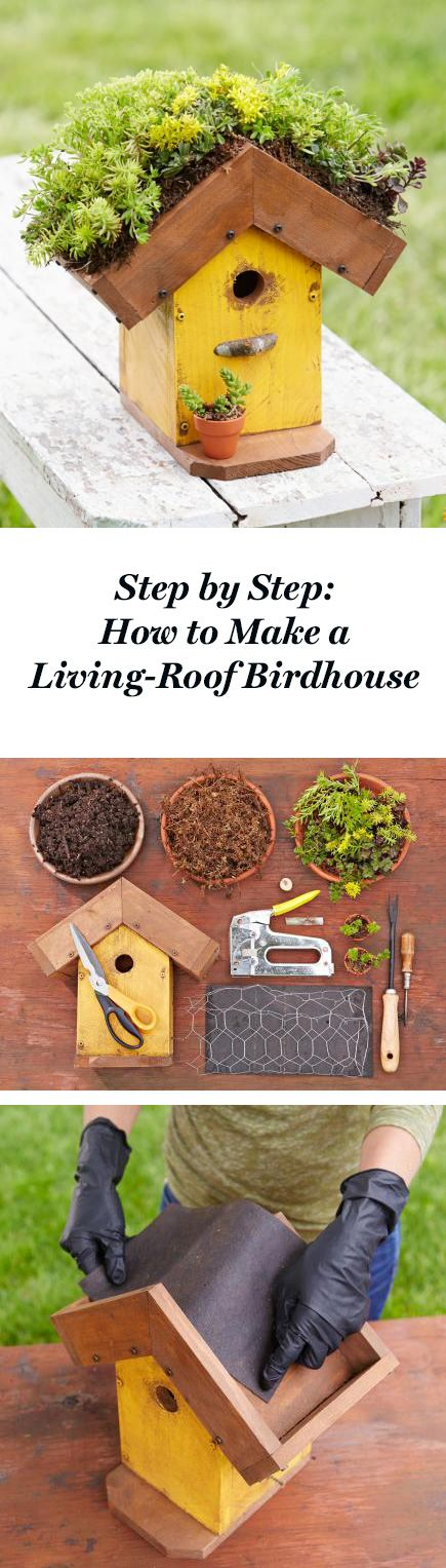 Here's a bird-friendly DIY project. Follow our step-by-step instructions: http://www.midwestliving.com/garden/ideas/how-to-make-a-living-roof-birdhouse/