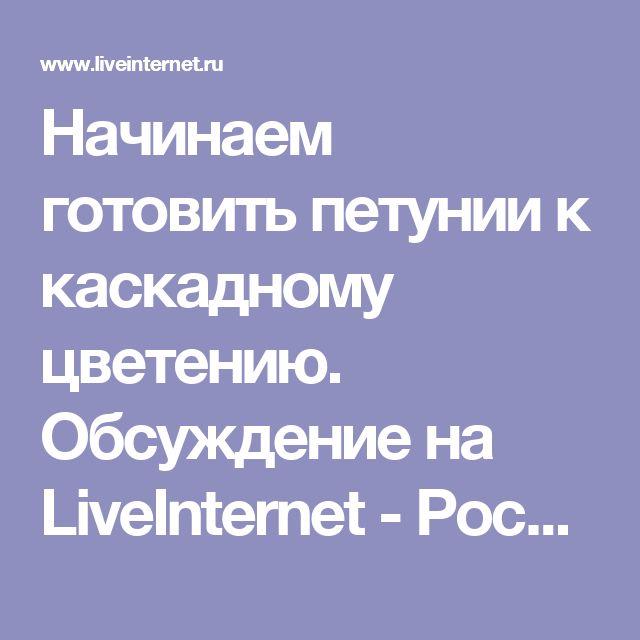 Начинаем готовить петунии к каскадному цветению. Обсуждение на LiveInternet - Российский Сервис Онлайн-Дневников