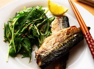 Good Reasons Why Diabetics Should Eat Mackerel - Diabetes Cure Diet