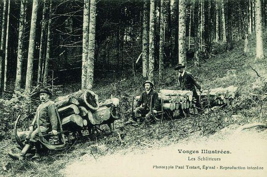 Schlitteurs de bois, dans les Vosges. France