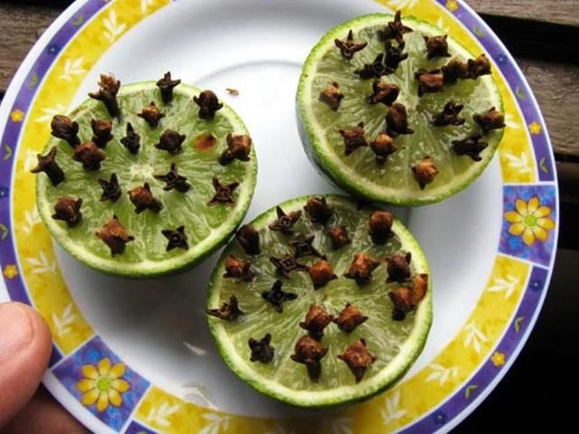 DIY ::   ALL NATURAL mosquito repellent - slice a lime in half and press in a good amount of cloves for an ALL NATURAL mosquito repellent