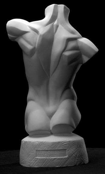 http://philippefaraut.com/store/reference-casts/anatomical-casts/male-planes-torso.html