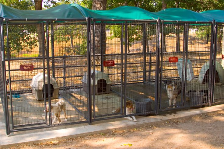 Kennel Shades are a perfect solution for shielding your pet from harmful sun rays.  Lightweight and durable, they are designed for a long outdoor life.