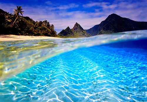 ocean: The National, Buckets Lists, American Samoa, The Ocean, South Pacific, Best Quality, National Parks, Borabora, Sea Turtles